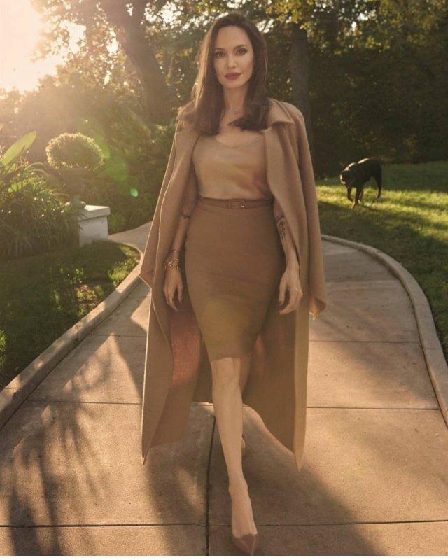 Анджелина Джоли в коричневом костюме