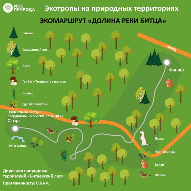 Экотропы Москвы. Где гулять?
