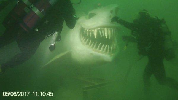 Статуя акулы в подводном парке на Невшательском озере