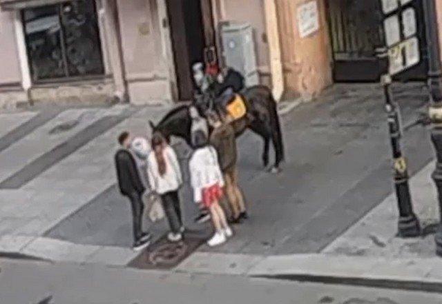 Скейтбордист из Петербурга захотел проехаться под лошадью и получил серьезные травмы