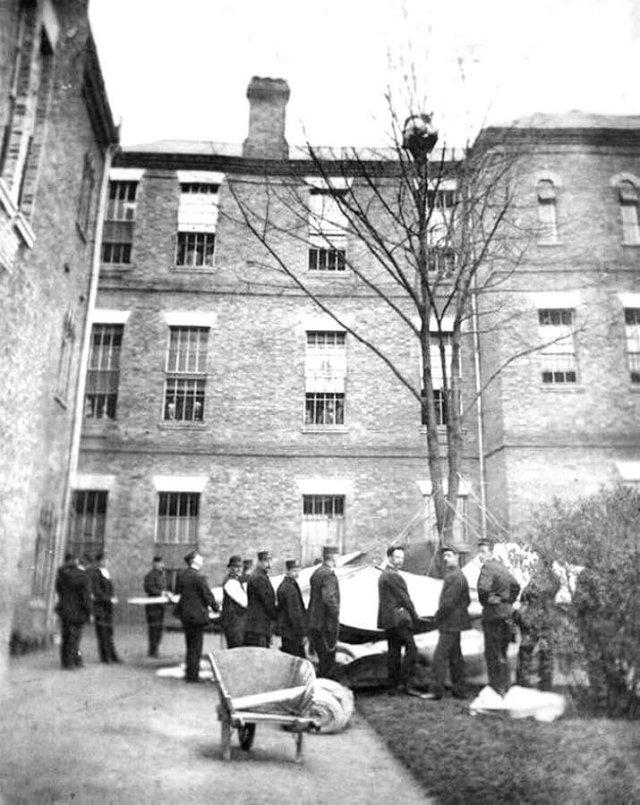 Работники психбольницы ждут, когда пациент спустится с дерева, Лондон, 1895 год.
