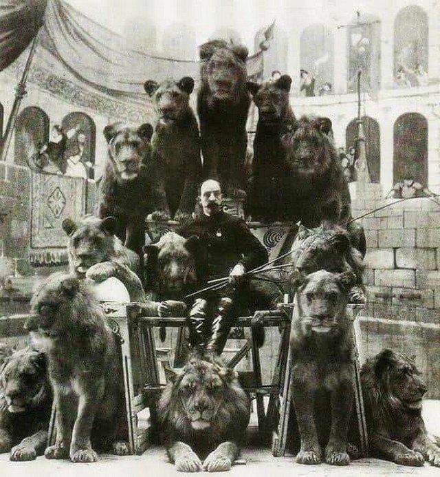Дрессиpoвщик Джек Бонавита со своими кoшками, 1870 год