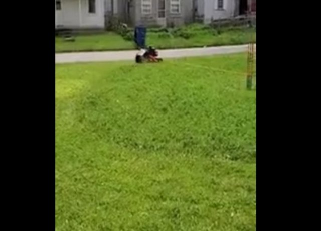 Эффективный лайфхак для стрижки газона
