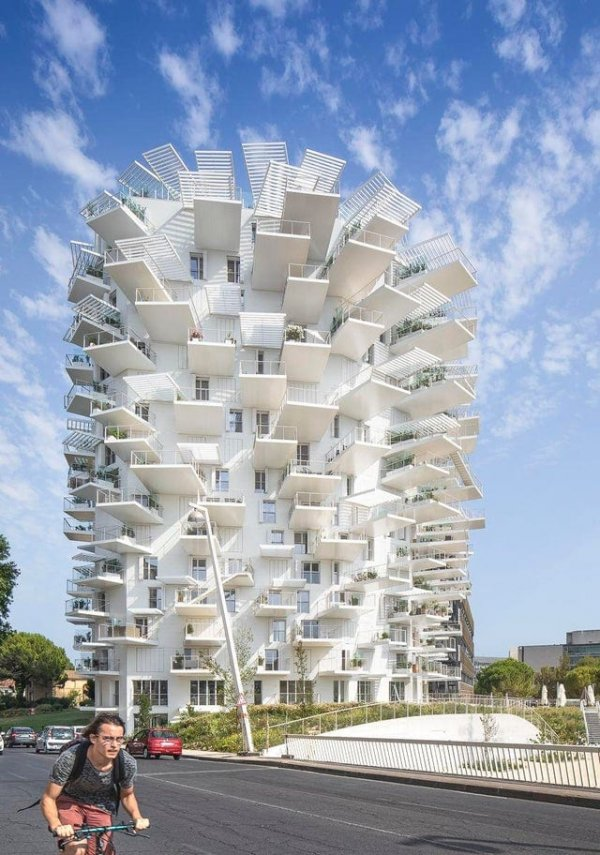 В 2019-м году во французском городе Монпелье появилась жилая башня L'Arbre Blanc