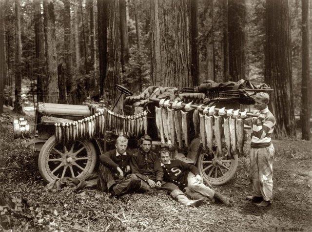 Дневной улов в Большой лагуне, округ Гумбольдт, штат Калифорния. 11 июня 1908 года.