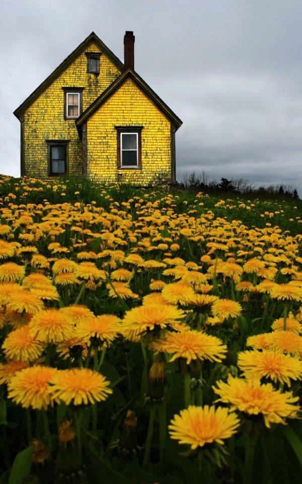 Дом в Новой Шотландии, Канада