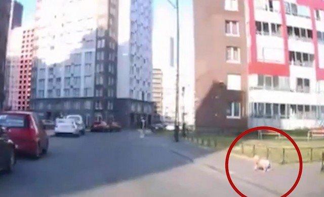 В Кудрово годовалый ребенок уполз с детской площадки на дорогу