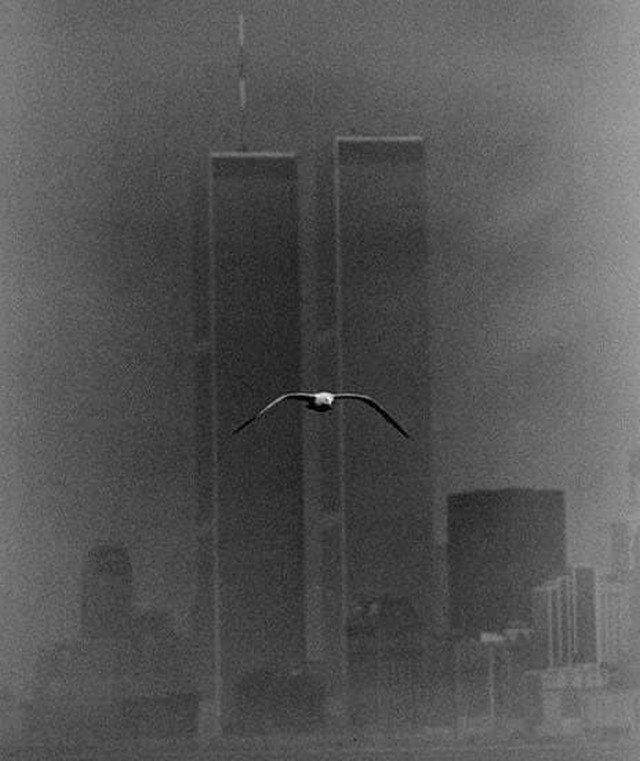 Бaшни-близнецы, Нью-Йорк, 1979 год.