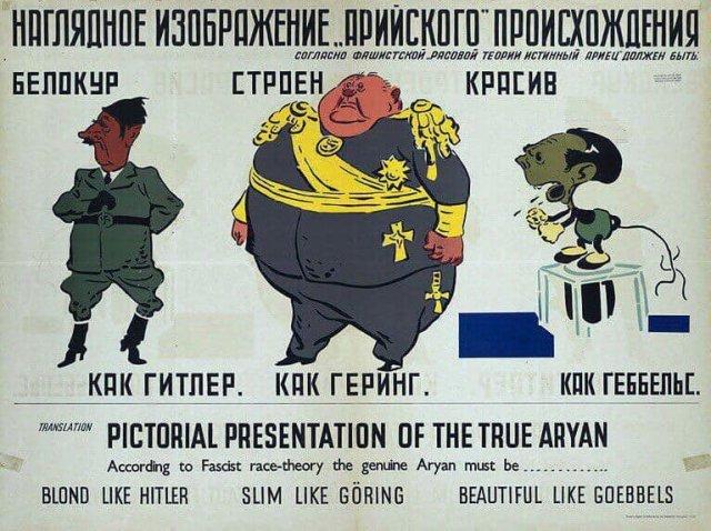 Советская карикатура времён Второй мировой войны, высмеивающая идеи идеальной арийской внешности.