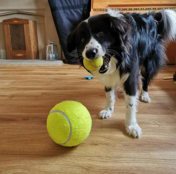 Какой большой мяч?