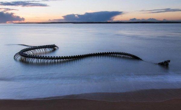 130-метровая скульптура «Морской змей» на пляже Сен-Бревин-ле-Пинс, Франция