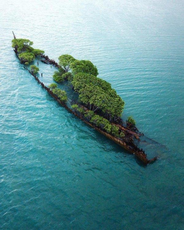 Затонувший корабль превратился в небольшой остров