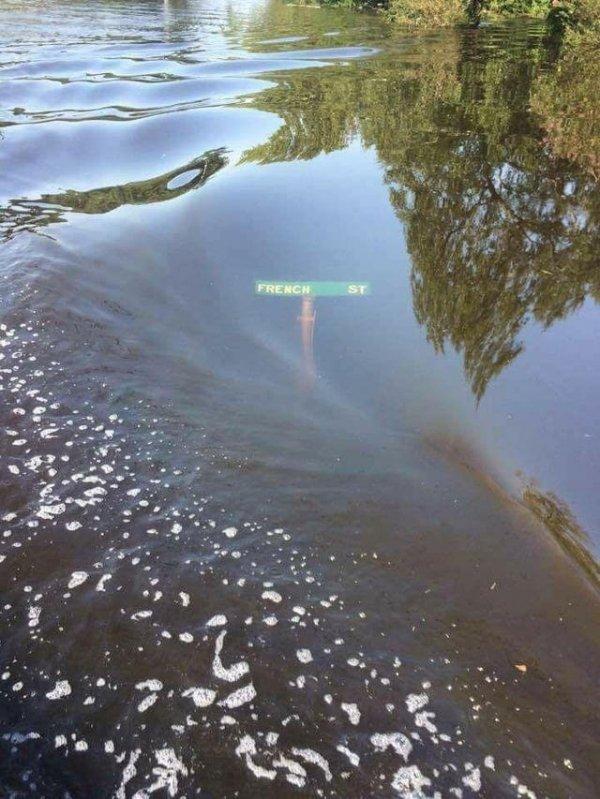Указатель Фрэнч Стрит в городе Ламбертон, Техас, оказался под водой