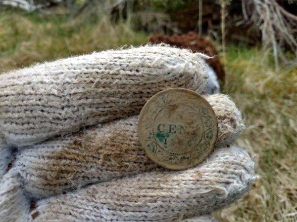 Большой канадский цент 125-летней давности, найденный с помощью металлодетектора