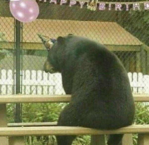 День рождения - грустный праздник
