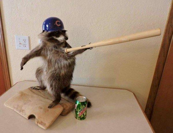 Любителям бейсбола в фантазии тоже не откажешь