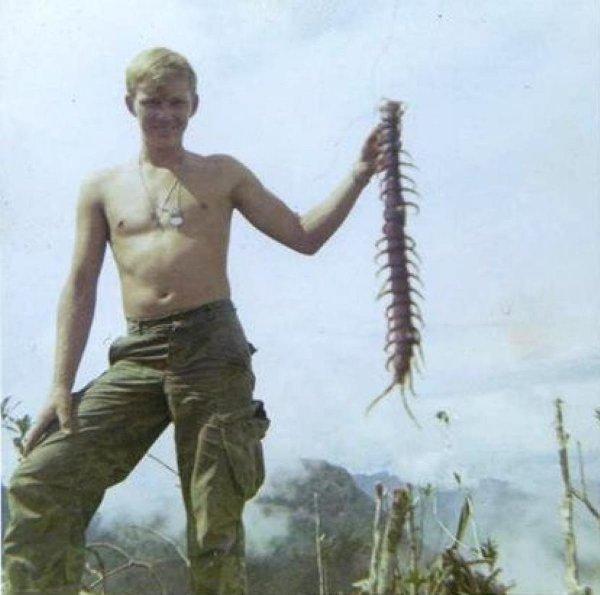 Солдат держит в руках вьетнамскую сколопендру
