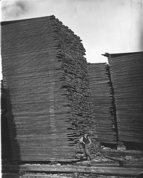 Мужчина позирует на фоне склада пиломатериалов