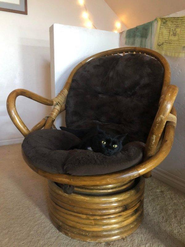 Шикарное кресло за полтора доллара (чуть больше ста рублей)