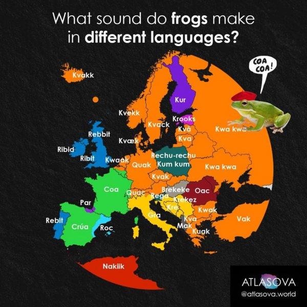 Какие звуки издают лягушки на разных языках
