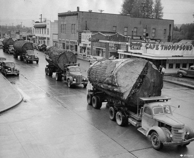 Грузовики с брёвнами в Норт-Бенд, округ Кинг, штат Вашингтон, 1943 год.