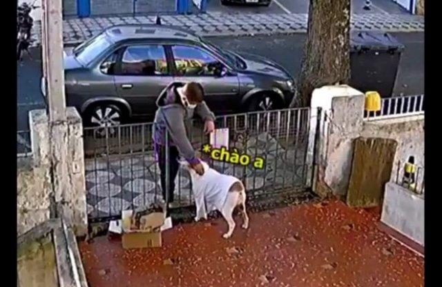 Парень зачем-то украл футболку у собаки