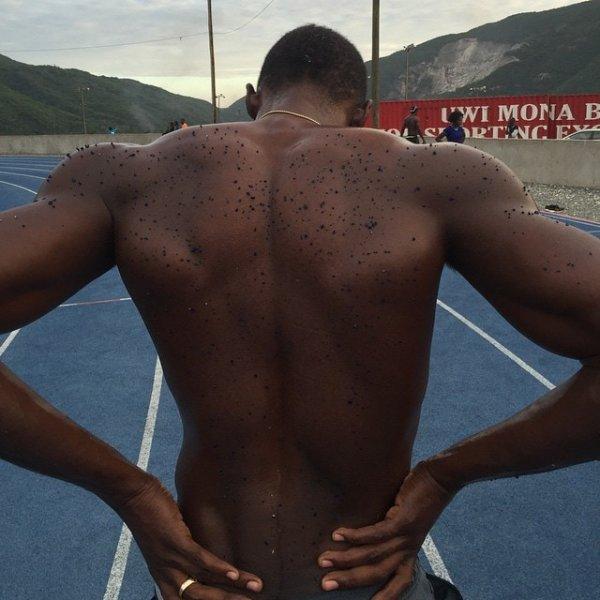В результате особо мощной тренировки часть стадиона осталась на спине Усейна Болта