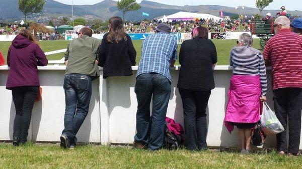 Достаточно сесть на забор, чтобы стать иллюзионистом