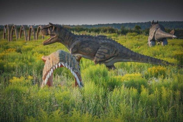 Недостроенный детский парк под Тулой. Тут живут динозавры