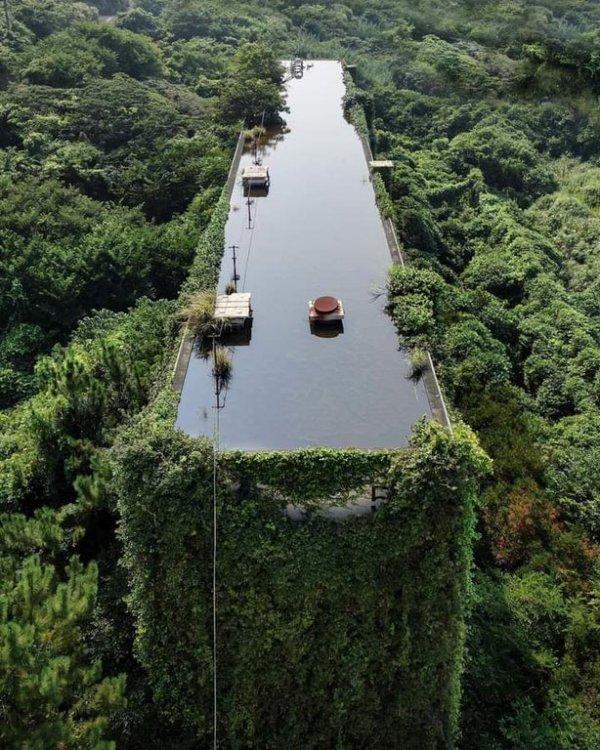 Природа захватила это заброшенное промышленное здание и добавила бассейн на крыше
