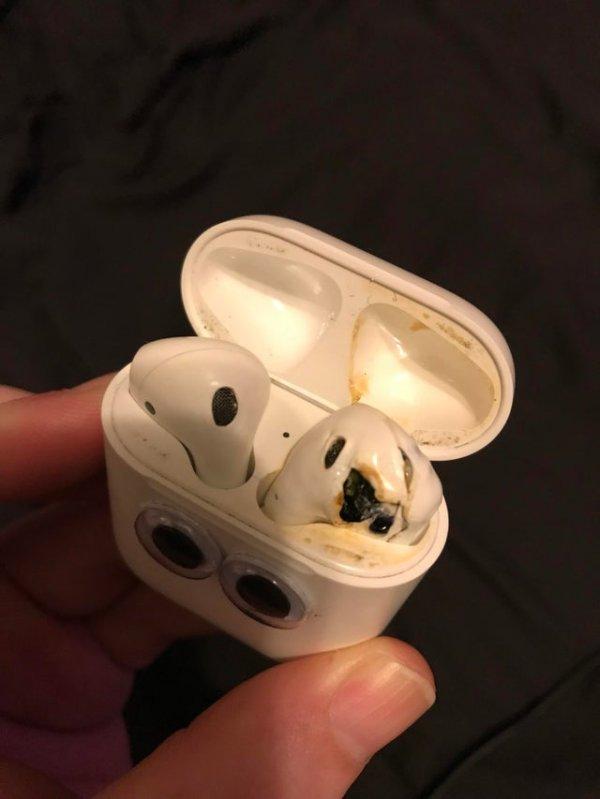 Мой друг спрятал мои AirPods в коробке с куриными наггетсами, которую я отправил в микроволновку, не открывая