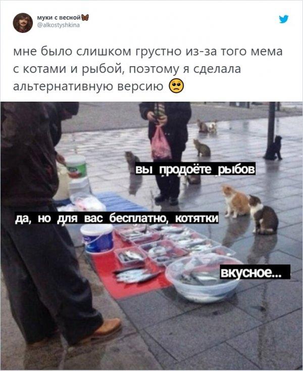 """""""Вы продоёте рыбов?"""": новый мем с котиками, который захватил соцсети"""