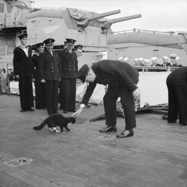 Уинстон Черчилль на борту линкора «Принц Уэльский» и талисман корабля, кот Блэки.