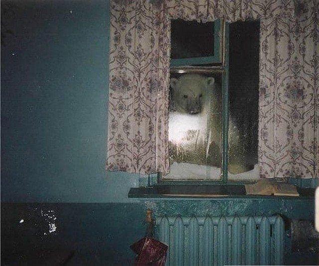 Где-то на севере, 1997 год.