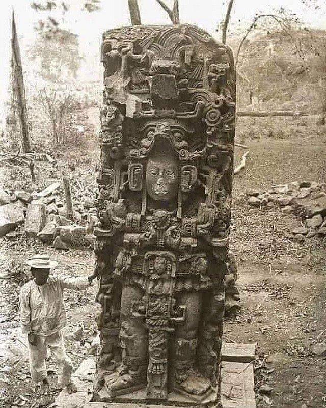 Фотография 1855 года, сделанная в джунглях Гондураса