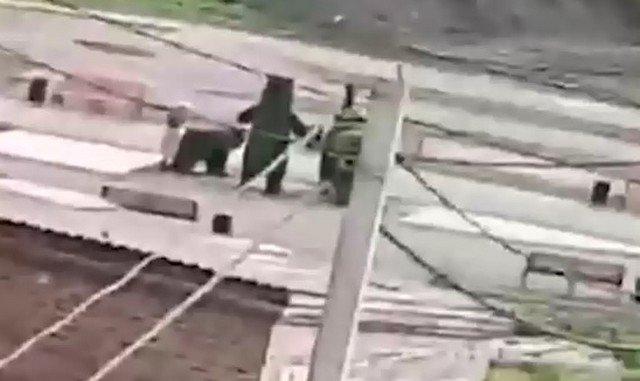 """Мужчина в Яшкино решил """"поиздеваться"""" над фигуркой зеленого медведя"""