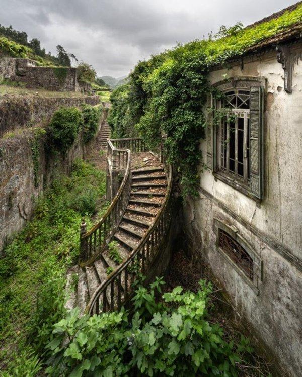 Парадная лестница, ведущая в португальскую виллу XIX века
