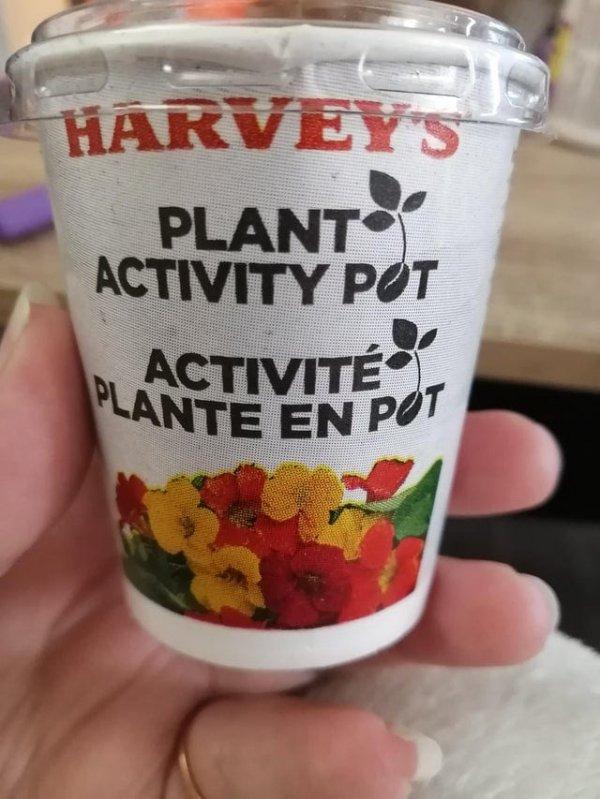 Канадская сеть быстрого питания вместо игрушек кладёт в детские наборы горшочки с семенами