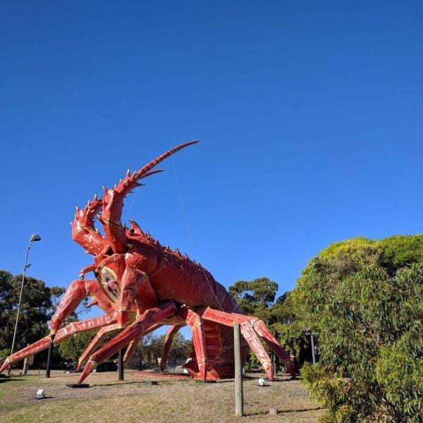 В Австралии очень любят гигантские скульптуры