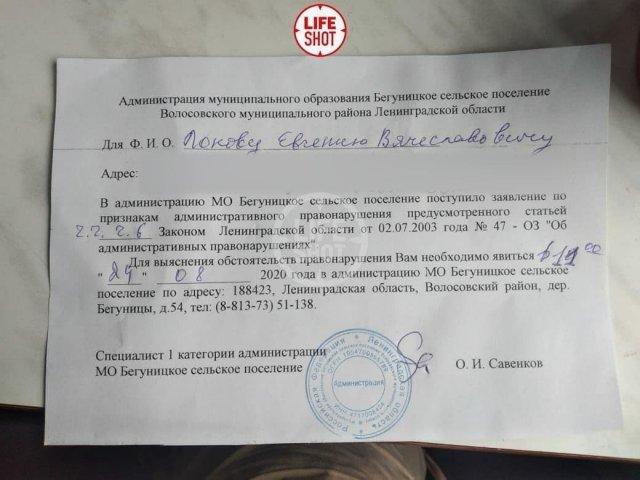 На кота Пушка из Ленобласти пожаловались в местную администрацию