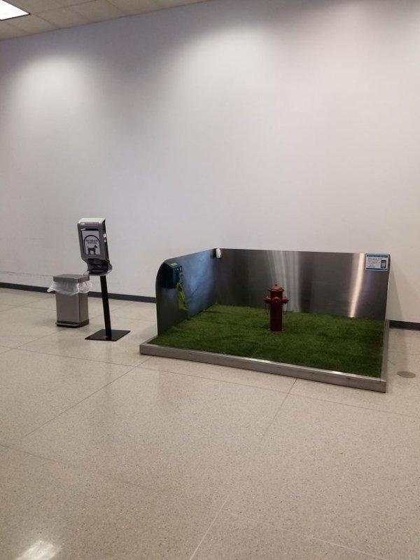 В этом аэропорту есть небольшой участок травы и пожарный гидрант, где собаки могут воспользоваться туалетом