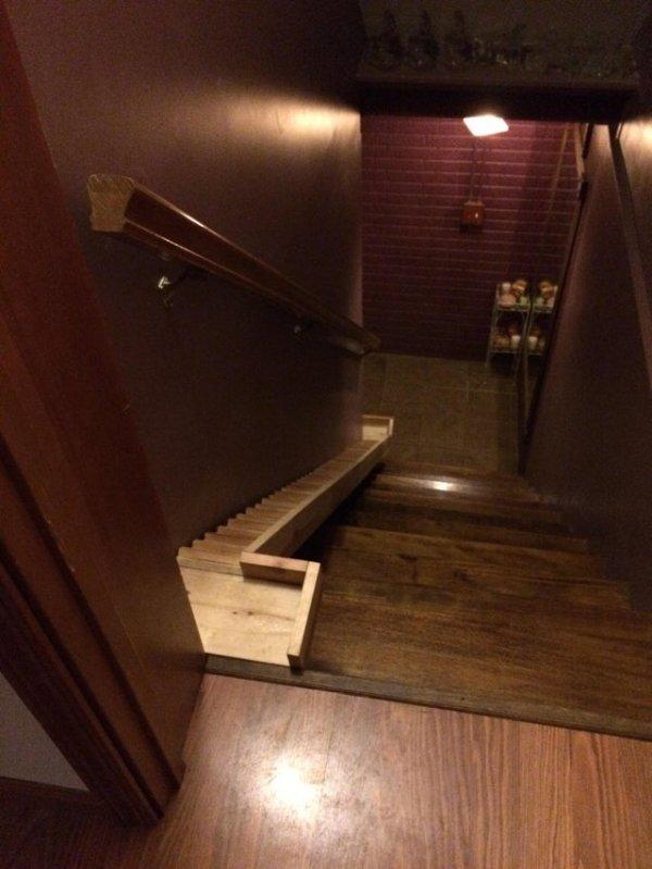 Мой дядя построил отдельную маленькую лестницу для своей крошечной собачки