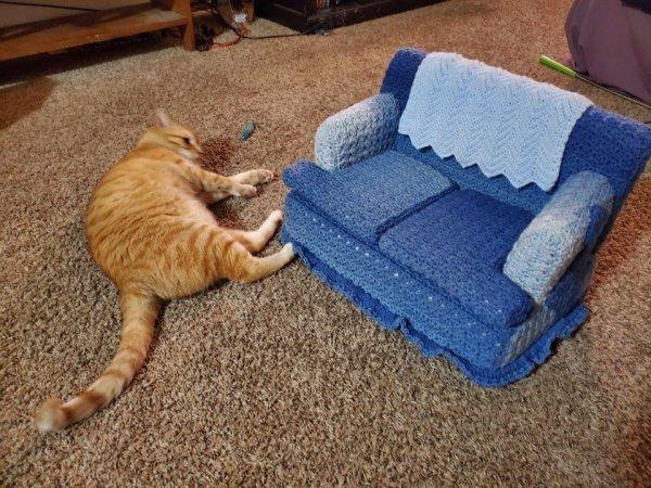 Моя тётя связала диванчик для своего кота