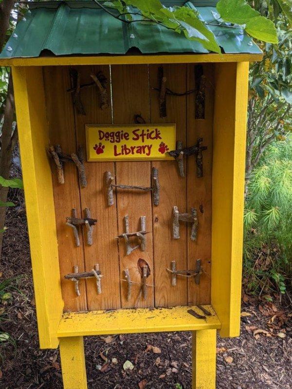 Нашёл в лесу бесплатную библиотеку палок для собак