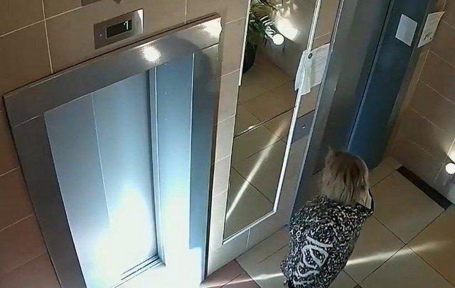 В Москве хозяйка чуть не убила собаку, оставив на поводку снаружи лифта