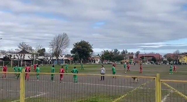 Во время любительского матча между «Сан Мигель де Рио Вьехо» и «Реал Сарагоса» собака забила гол