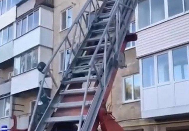 В Свердловской области пожарные спасли из огня очень важного жильца, но забрали у него одну жизнь