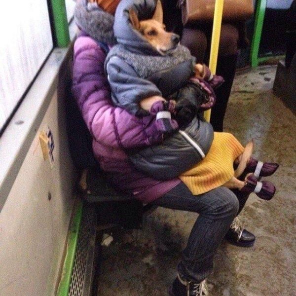 Россия — очень холодная страна, но здесь есть бабушки с тёплыми сердцами