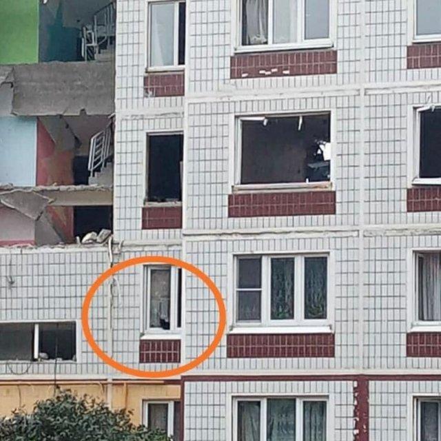 Волонтеры просят спасти домашних животных из разрушенного дома в Ногинске, где взорвался газ
