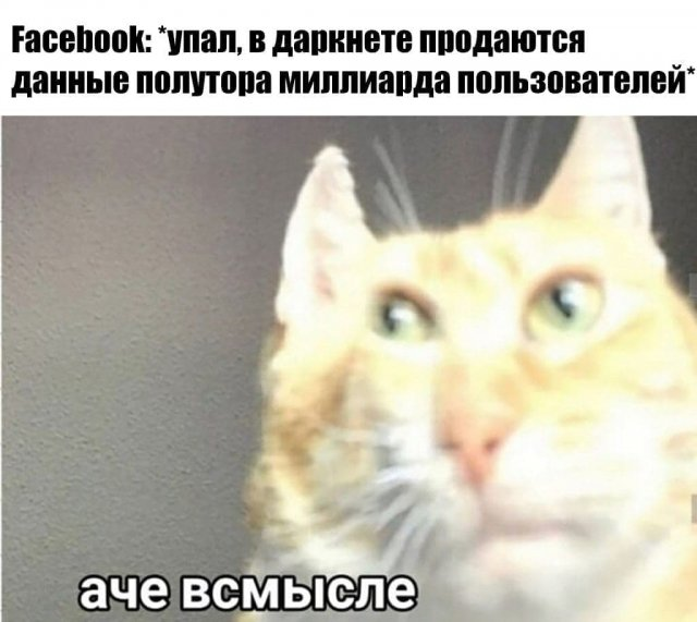 Глобальный сбой Facebook, Instagram и WhatsApp: шутки и мемы